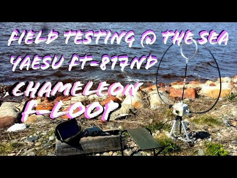 Field Test @ The Sea | FT-817 Chameleon F-Loop