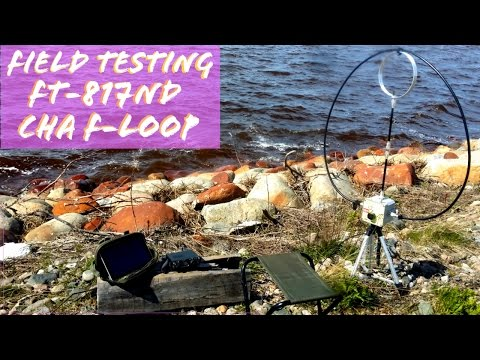 Chameleon F-Loop FT-817 | Field Test