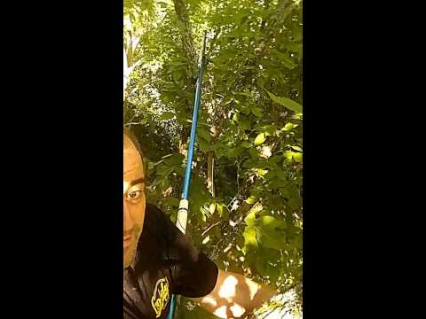 Up In The Tree... Rigging ham radio antennas